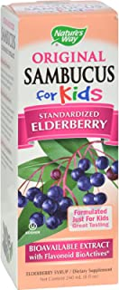 Natures Way Sambucus Kids Syrup Berry - 8 fl oz - Pack of 5