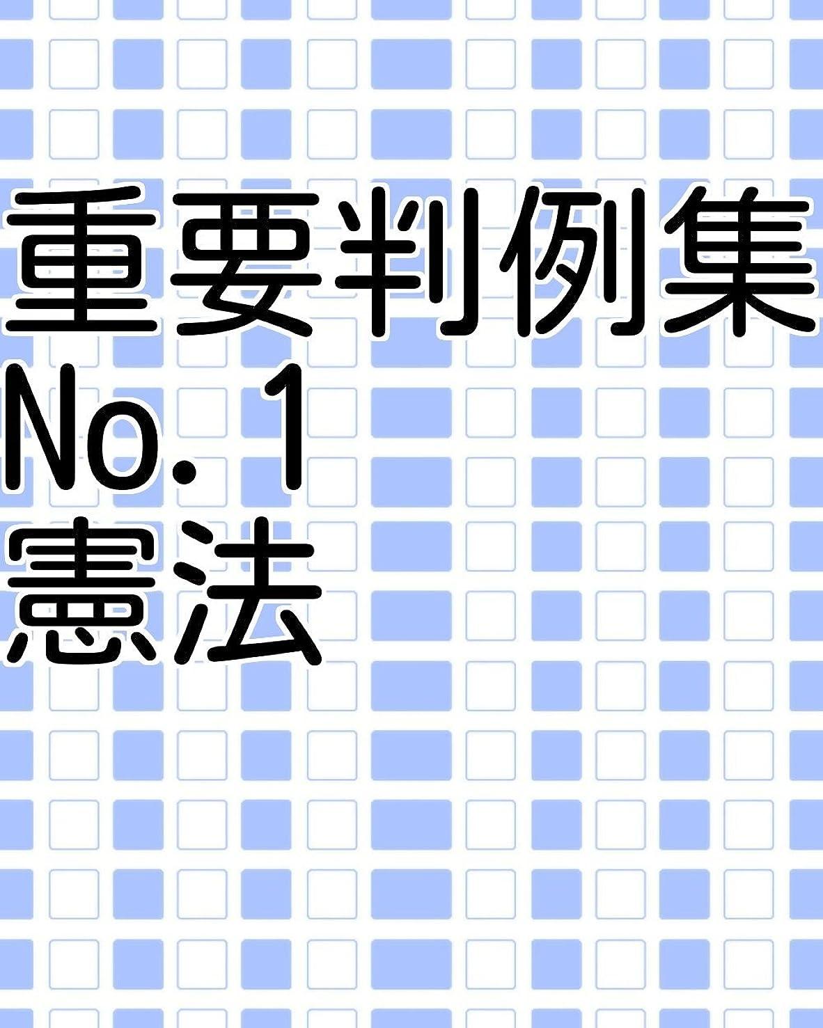 スカイポーン三重要判例集 No.1 憲法