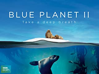 Best blue planet desert Reviews