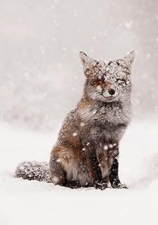 Snow Fox Boxed Holiday Half Notecards
