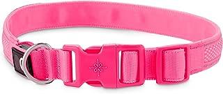 GOOD2GO Neon Pink LED Light-Up Dog Collar
