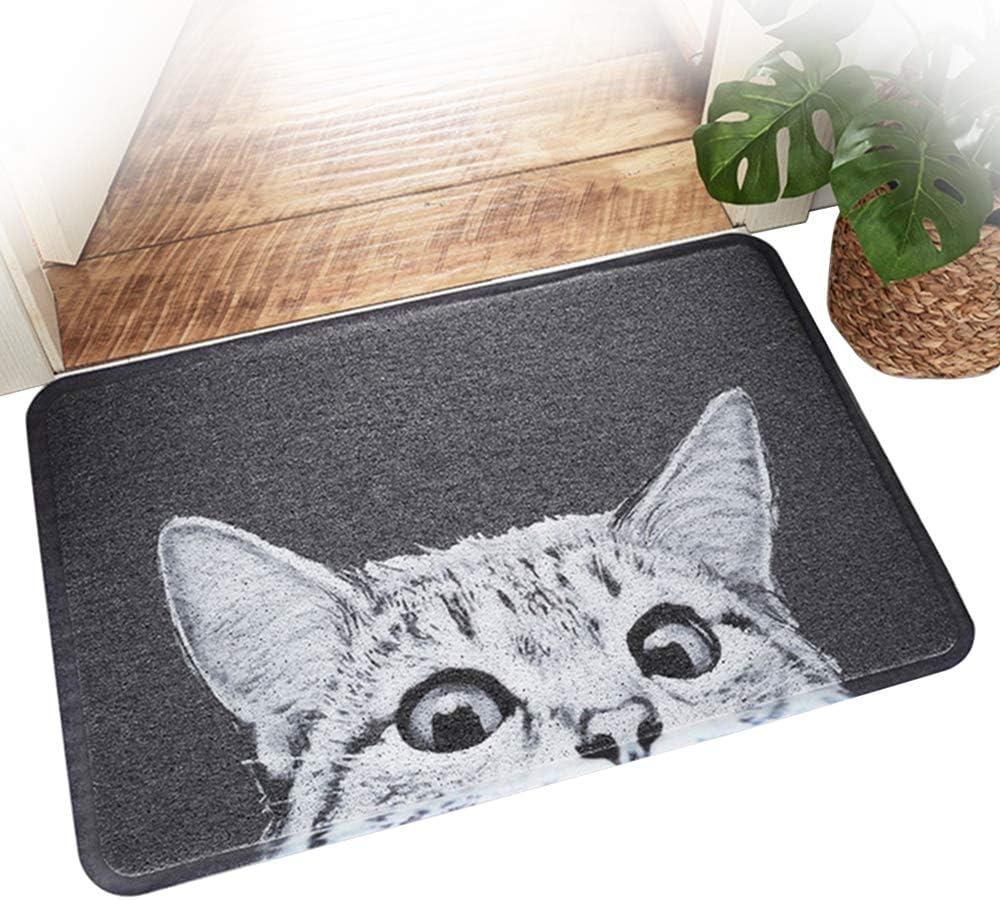 lavabile personalizzabile con gatto e gatto per esterni 40 x 60 cm tappetino per esterni e interni divertente zerbino in gomma per porta Songgaogao