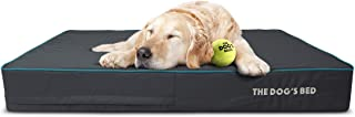 Best ball bed cost Reviews