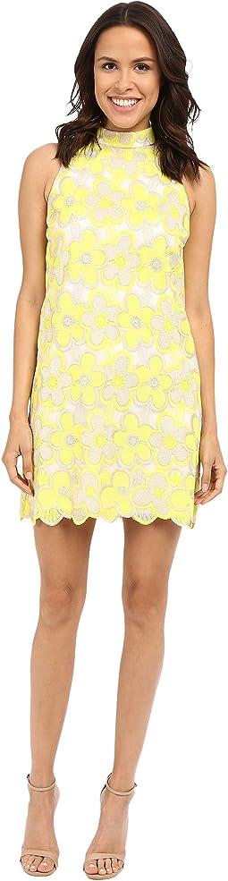 Delmar Embroidered Mesh Sleeveless Mock Neck Shift Dress
