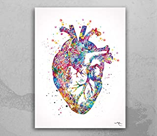 Impresión de arte médico de anatomía de corazón, impresión de acuarela, decoración de pared, arte médico, impresión de art...