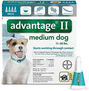 Advantage II Topical Flea Medium Dog Treatment, 4 Monthly Treatments