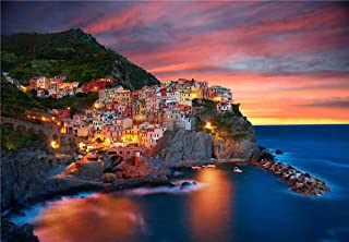 300 Pieces Puzzles for Adults Jigsaw Puzzles Large Floor Puzzle Kids DIY Toys for Creative Gift Home Decor(9302-Cinque Terre)