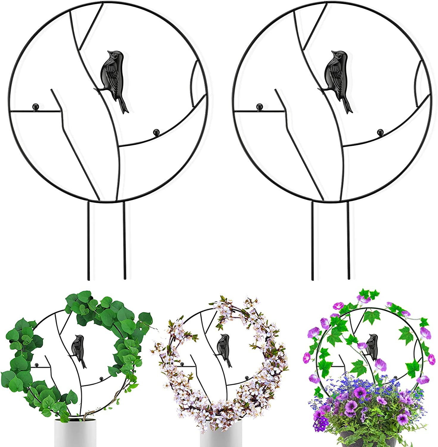 YASUOA 2 Pack Funny Garden Trellis, Black Coated Vine Plant Trellis, Metal Iron Round Shaped Garden Plant Support Stake Stand for DIY Potted Climbing Plants Flower Vegetables Vine Rack