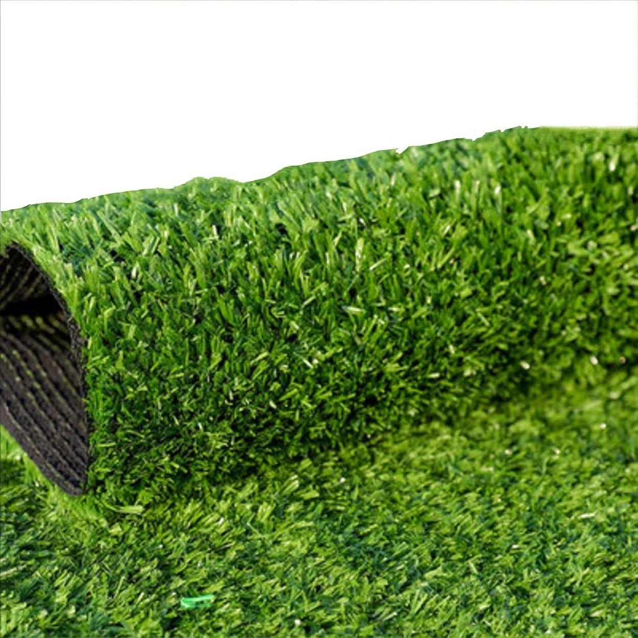 本部パプアニューギニアアーティストYNFNGXU 人工芝偽造芝生 - 15 Mm暗号化模造ガーデン芝生、バルコニーとテラス2 X 1 Mに適したリアルな屋外の床 (Size : 1x2m)