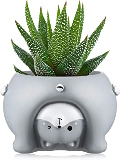 Animal Flowerpot Cute Animal Shaped Plant Pots Cartoon Succulent Plant Pots Mini Small Resin Flower Pots Garden Ornaments ...