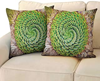 RenteriaDecor Plant,Pillowcase Adorable National Flower of Lesotho South of Africa Aloe Polyphylla Spinning Spiral Aloe Vera 24
