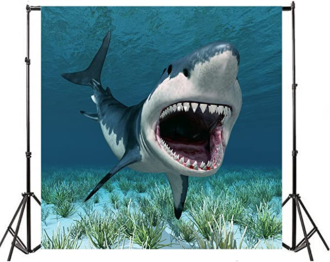 Shark 10x12 FT Backdrop Photographers,Wild Fish Breaking Wooden Plank Danger Sign Killer Creature Fun Illustration Background for Baby Birthday Party Wedding Vinyl Studio Props Photography