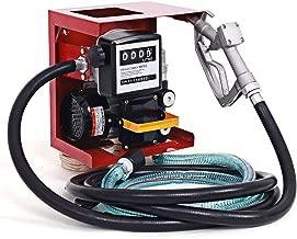 Goplus Electric Diesel Oil Fuel Transfer Pump w/Meter, 13ft Hose & Nozzle, 110V