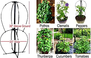 Scroll Trellis Ideal for Small Spaces, Pothos, Tomato, Climbing Plant Obelisk for Planters or In-ground 38 Inches Tall, Lead, Mercury, BPA-Free, Extra Wide (20 inch X 20 inch Wide) (1 Plant Support)