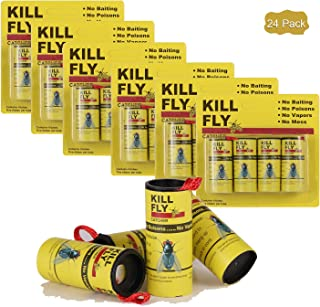 Best black flag fly strips Reviews