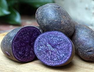 Purple Majesty Seed Potato 6 Tubers - Heirloom - Great Taste!