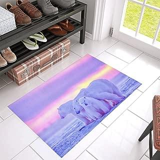 Unique Debora Customize Non-Slip Doormat Floor Mat Rubber Indoor or Outdoor Mat Pad for 30x18 Inch with Design Polar Bear Cubs Canadian Arctic Sunset