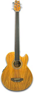 5 string fretless acoustic electric bass