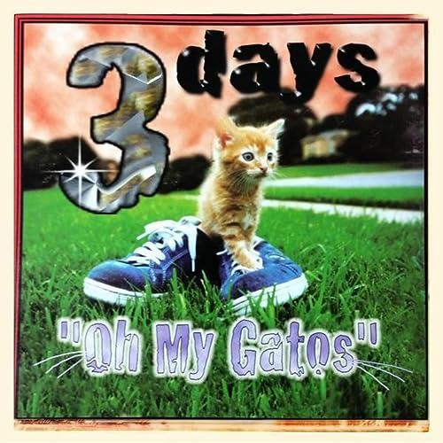 Oh My Gatos