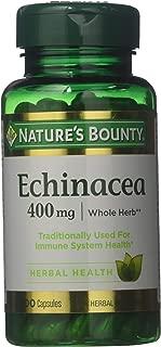 echinacea sundown coneflower