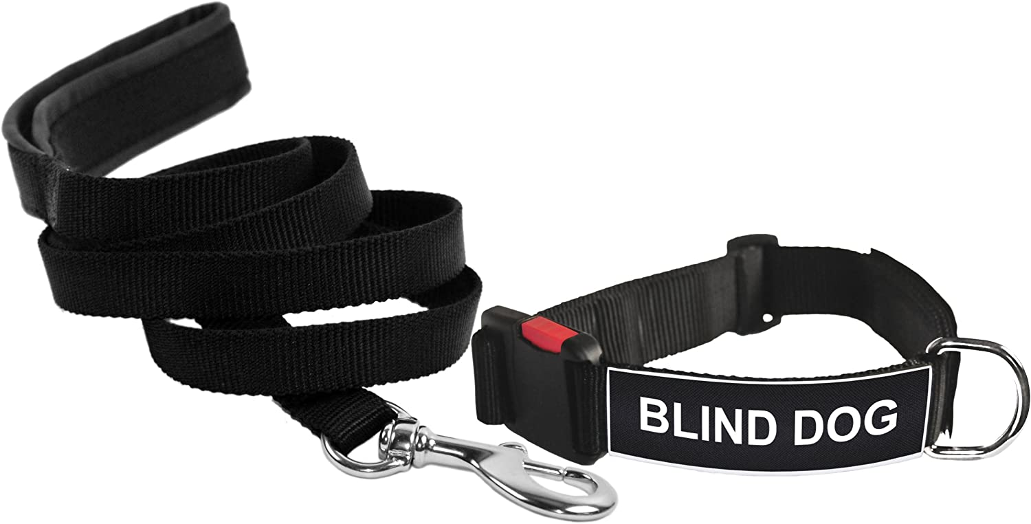 Dean & Tyler Blind Dog Large Patch Collar with 6Feet Padded Puppy Leash, Black