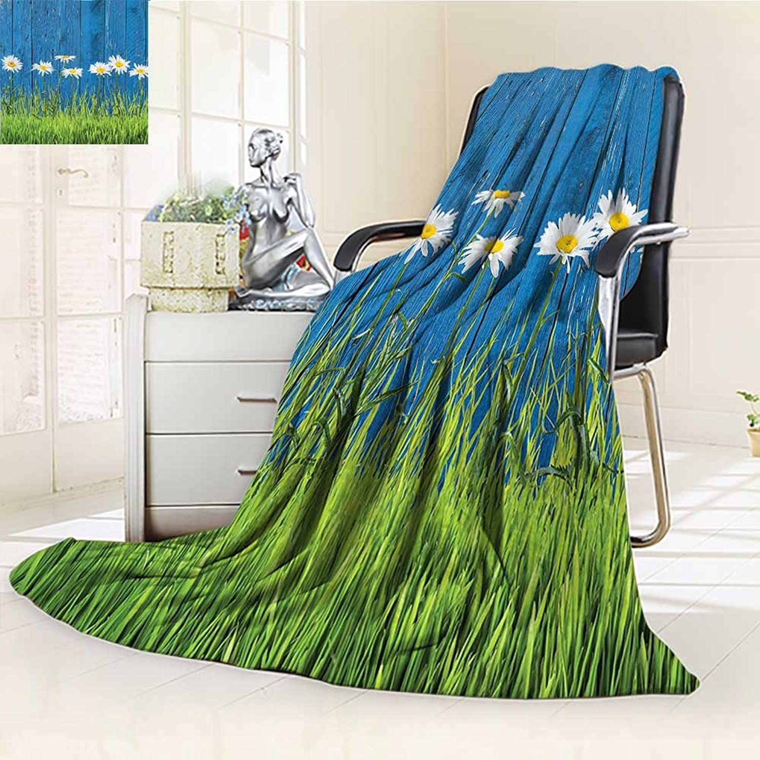 YOYIHOME Digital Printing Duplex Printed Blanket Grass and Daisy On A Fence Summer Simple Vintage Style Print bluee Green White Summer Quilt Comforter  W47 x H59