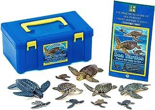 カロラータ ウミガメの親子ボックス (立体図鑑) 爬虫類 海亀 リアル フィギュアボックス [解説書付き] 食品衛生法クリア 5種 10個