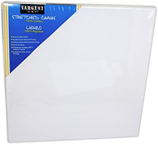 Best 20x20 inch canvas Reviews