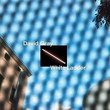 White Ladder 2020
