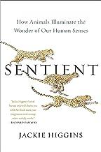 Sentient: How Animals Illuminate the Wonder of Our Human Senses