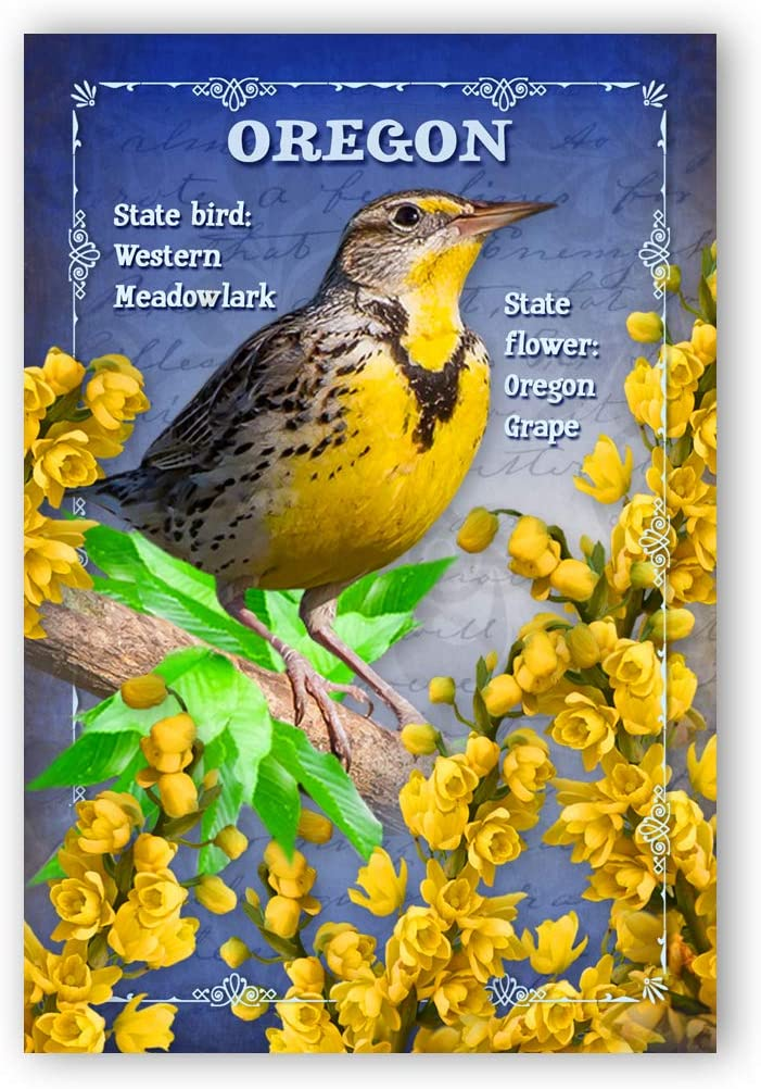 OREGON BIRD Ranking TOP10 AND FLOWER postcard Classic set identical 20 postcards. O of