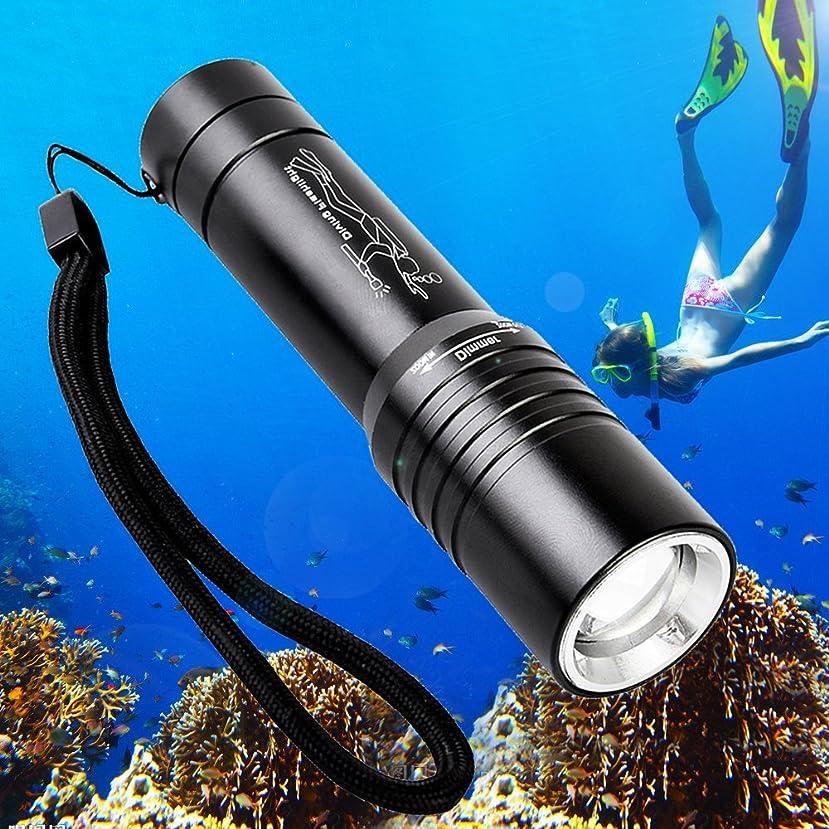 想像する規則性名前を作るModoao ダイビング 懐中電灯 80M 水中ライト LED T6 1500ルーメン ハンディライト防水仕様 防災防犯 夜釣り ジョギング 自転車用に