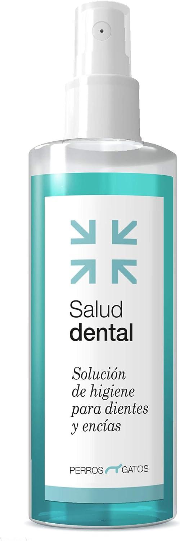 solución para dientes higiene dental gatos