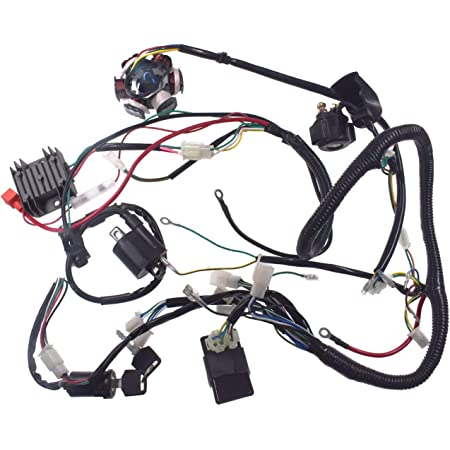 Amazon.com: Supermotorparts 150CC GY6 Wiring Harness Wire Loom Stator CDI  Switch Electrics Assembly for 4-Stroke Engine 150CC 125CC Go Kart ATV  Scooter Buggy: Automotive | Gy6 150 Wiring Harness |  | Amazon.com