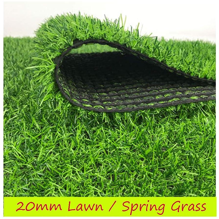 鳴らすレンズイソギンチャクXIAODONG 合成芝 ? 緑豊かなフェイクターフカーペット 防水、 耐引裂性、 屋内/屋外装飾で使用 ? 20mmの草の高さ (Size : 2*2m)