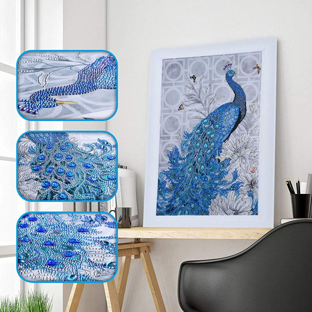 Amersin DIY 5D Special Shaped Diamond Painting by Number Kits, Full Drill Rhinestone Embroidery Cross Stitch Pictures for Christmas Home Decor (Peacock 1)