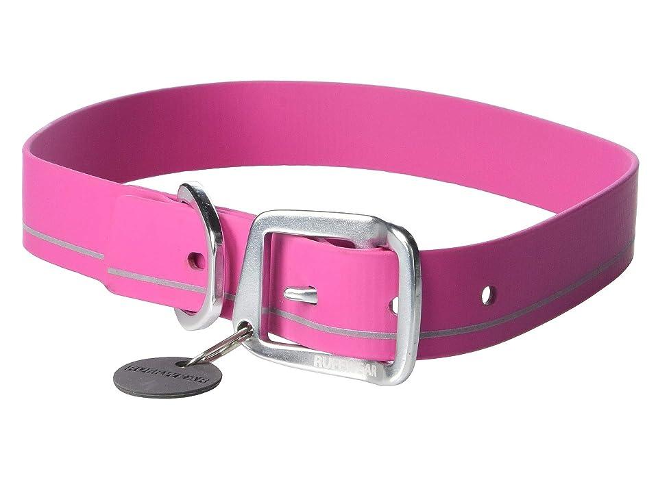 Ruffwear Headwater Collar (Alpenglow Pink) Dog Collar, Black