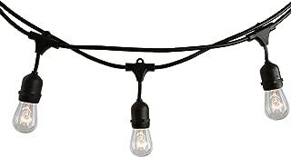 Bulbrite 14 ft, 10-Socket Decorative Kit with Clear Incandescent STRING10/E26/BLACK-S14KT Indoor and Outdoor String Lights, 1 Item, Black