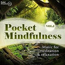 Pocket Mindfulness, Vol. 1