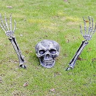 Best skeleton yard decorations Reviews