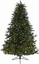 Kaemingk Pre-Lit Everlands Skandia Fir Artificial Christmas Tree with Warm Clear LED Lights, 9' x 72