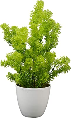 Fancy Mart Artificial Plants Coriander in Round Pot (30 cm, Green)