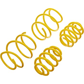 ST Suspension 65412 Sport-tech Lowering Spring for BMW E39 Sports Wagon, Set of 4