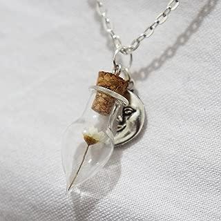 Real Dried Flower Pendant Miniature Terrarium Necklace Nature Jewelry White Flower Teardrop Mini Glass Bottle Crescent Moon