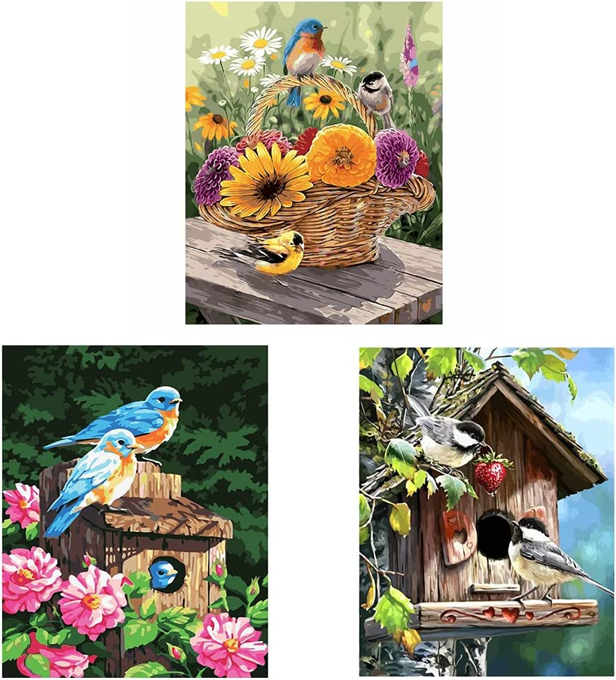 Colorful Kinds of Birds DIY Acrylic Oil Paint by Numbers Kits on