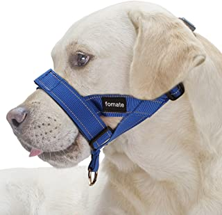 leash with muzzle