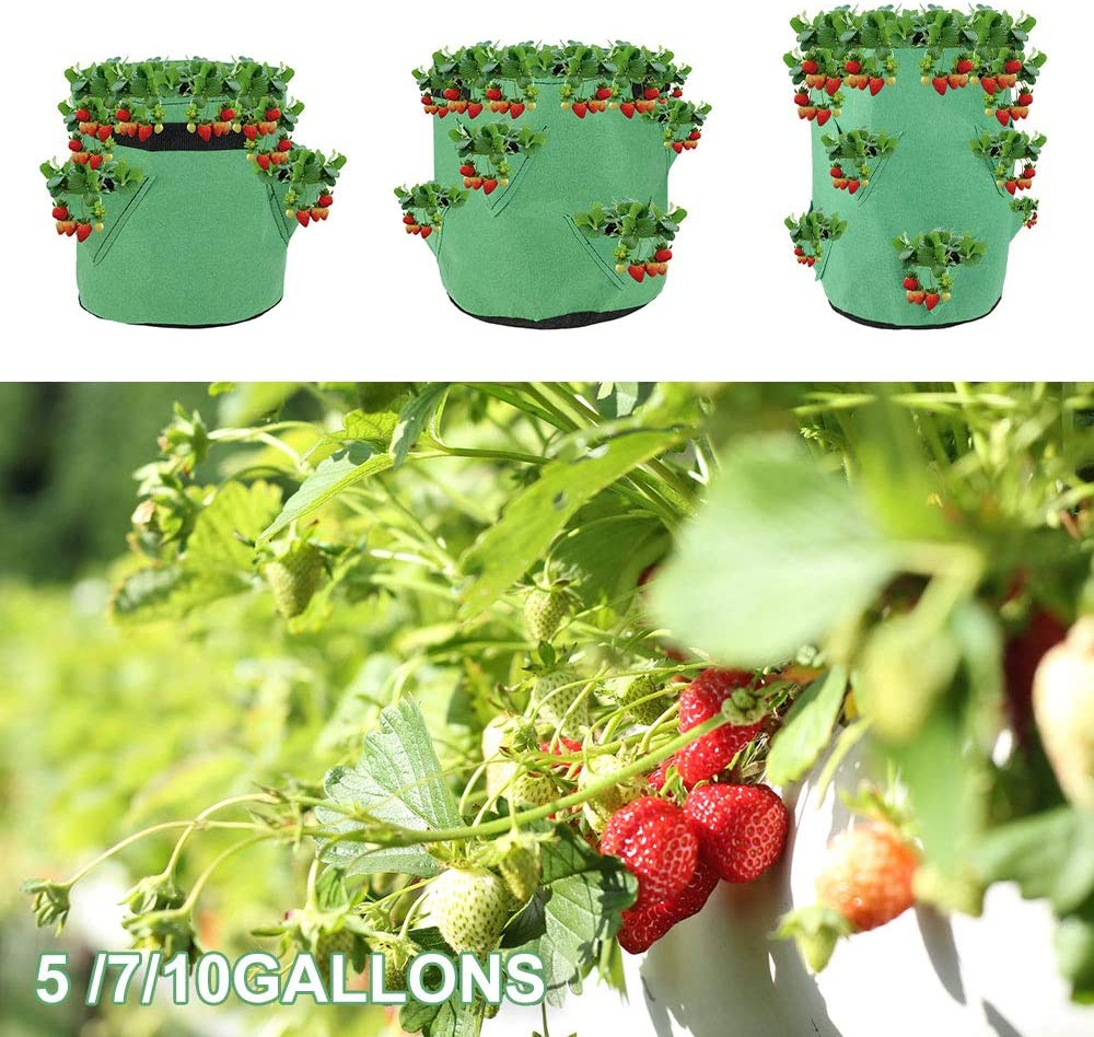 Vegetables Plant Containers for Indoor /& Outdoor Planting Strawberry Grow Bag Growing Bags with Handle Breathable Non-Woven Fabric Strawberry Growing Bags with 8 Pocket 10gallon