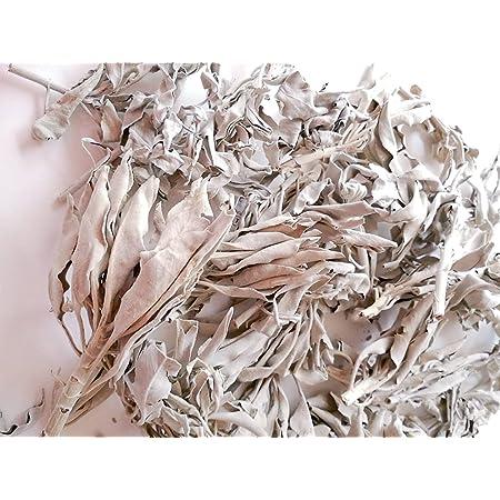 【品質が大切な理由とは】 ホワイトセージ 浄化用 (茎+リーフ) 30g 手で厳選 無農薬 カルフォルニア 直輸入 オーガニック