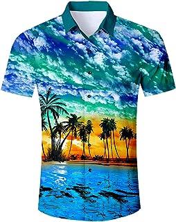 RAISEVERN Camisa Hawaiana Divertida de Verano para Hombre Camisas Casuales de Manga Corta Trajes Ropa de Vacaciones botón ...