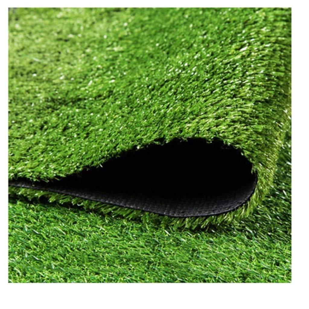 WJ Alfombra Hierba Verde Falsa Césped Suelo Piso Alfombra Alfombra Boda Artificial Jardín De Jardín De La Escuela Al Aire Libre (Color : T 1cm, Size : 2 * 5m): Amazon.es: Jardín